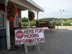 Spicer Orchard in Hartland, MI